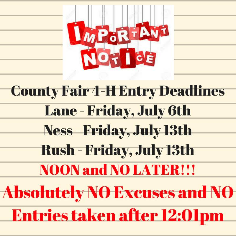 fair entries